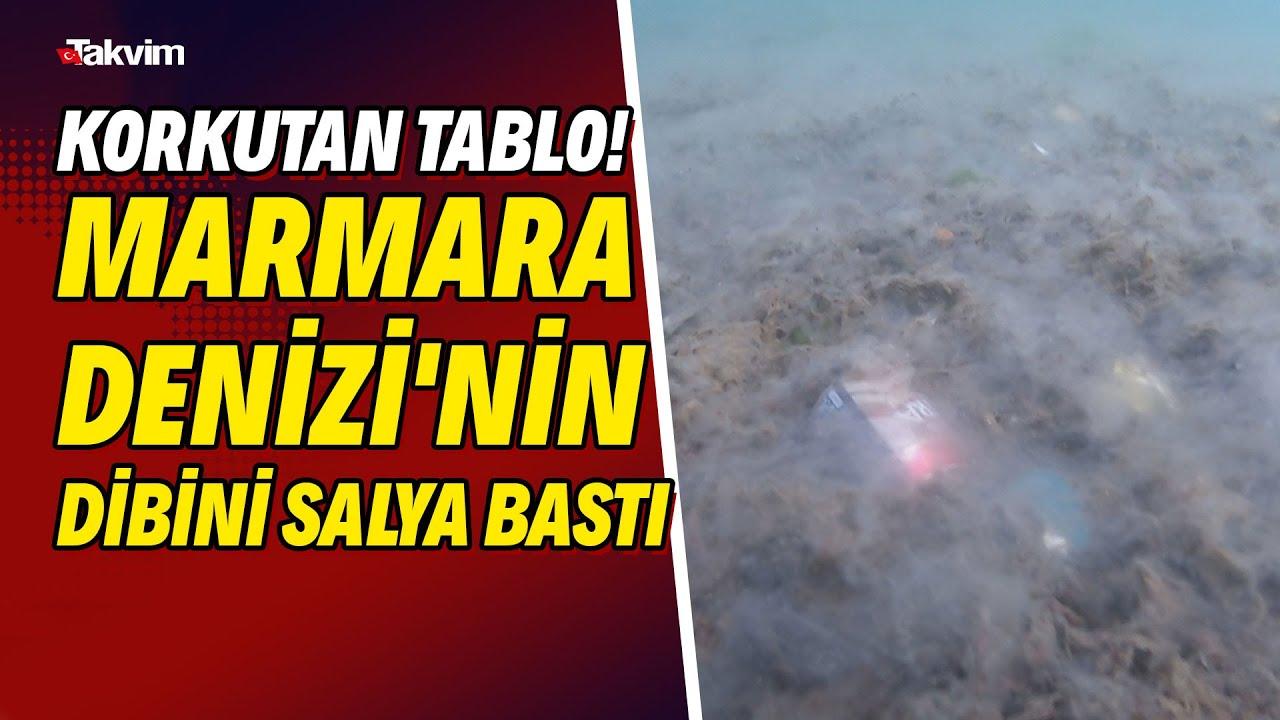 Korkutan tablo! Marmara Denizi'nin dibini salya bastı