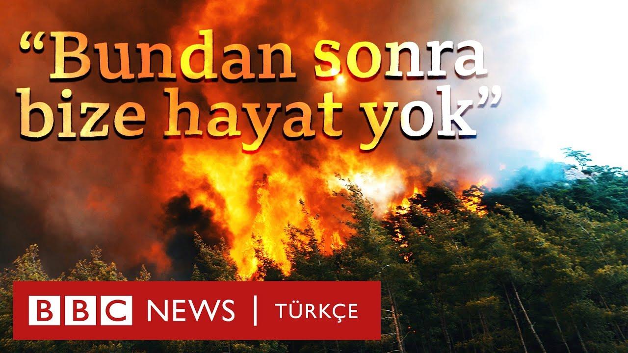 Marmaris'te yangın: Çam ağaçlarının çoğu yandı