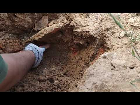 Arkeolojik mezar kazısı kurbağa tılsımı