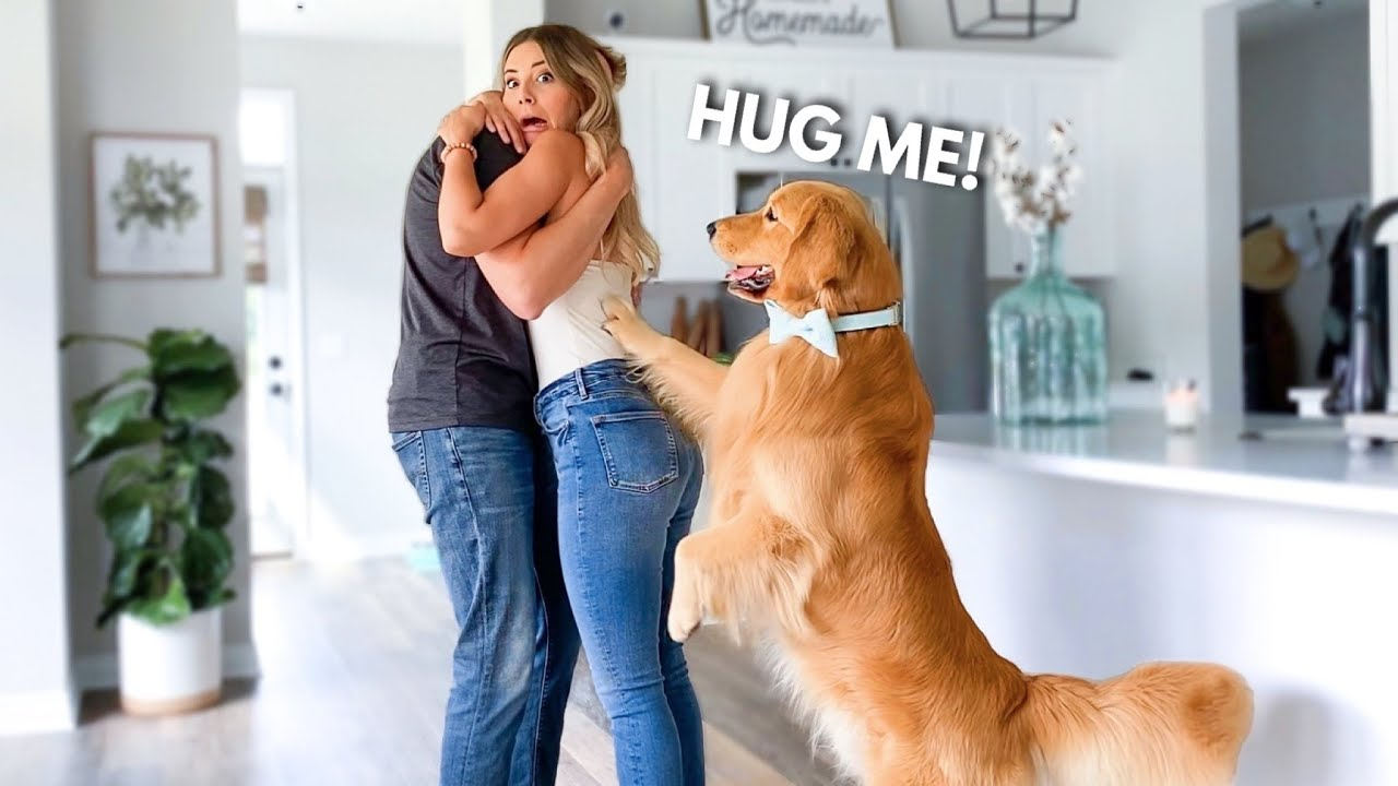 This Is What My Dog Does When I Hug My Husband