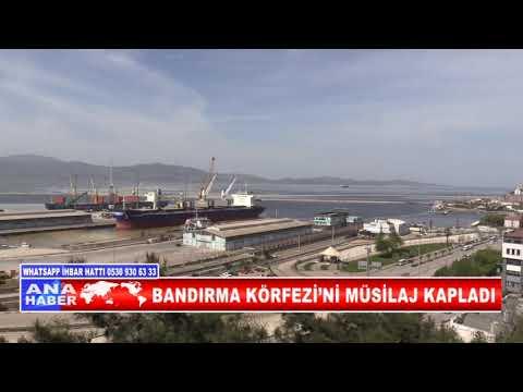 BANDIRMA KÖRFEZİ'Nİ MÜSİLAJ KAPLADI